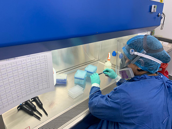 La PUCE ha procesado más de60 000 pruebas PCR para el diagnóstico de COVID-19